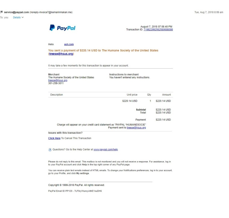 pay pal scam email.jpg
